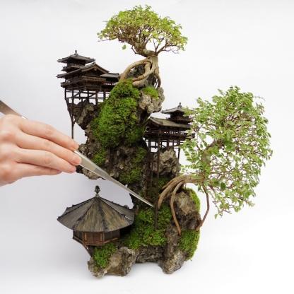 cliff-bonsai-1