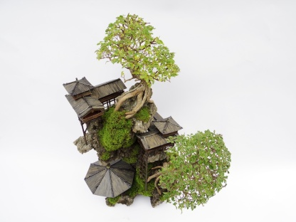 cliff-bonsai-2