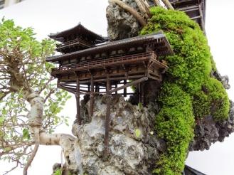 cliff-bonsai-3