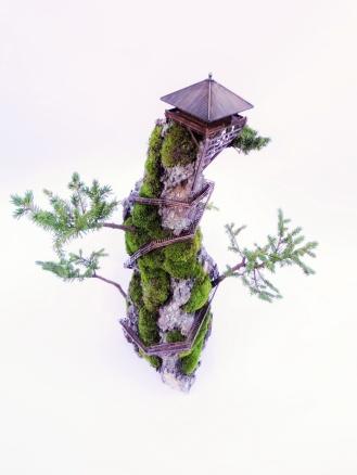 cliff-bonsai-4