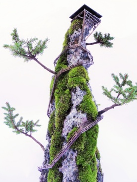cliff-bonsai-5
