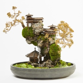 cliff-bonsai-7