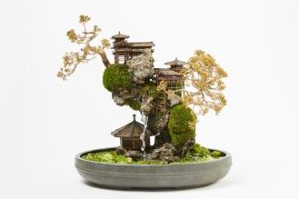 cliff-bonsai-7