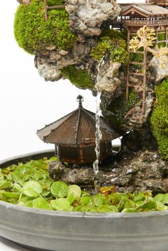 cliff-bonsai-8