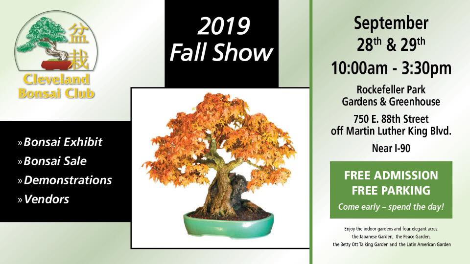 Cleveland Fall Bonsai Show